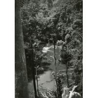 A.E.F. La rivière Onoï