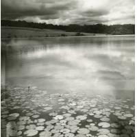 A.E.F. Lacs de N'Damne et N'Zué, dans la savane entre le lac Azingo et la mer