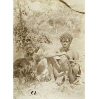 A Lealuyi, une chèvre à vendre