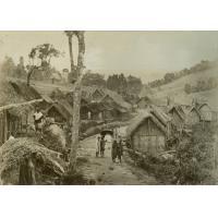 A l'orée de la forêt, à l'est d'Ambositra