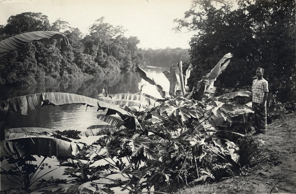 Abanga / non identifié (1900/1920)