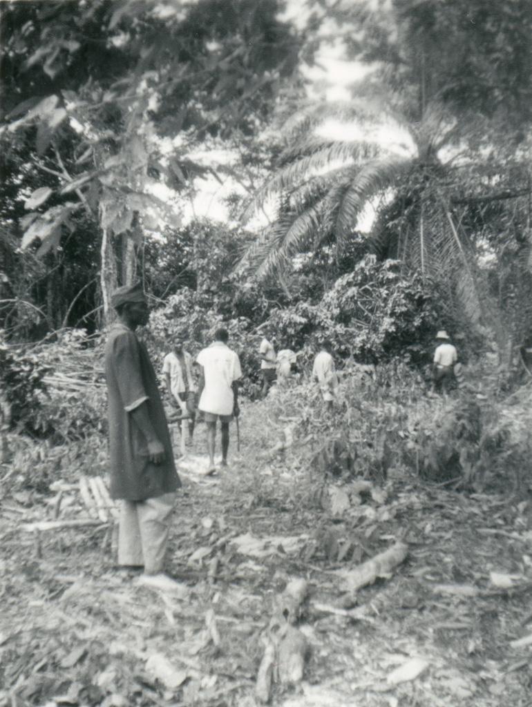 Abattage d'arbres sur le futur terrain de la maison de la mère et de l'enfant / Alain Hutter (1956/1968)