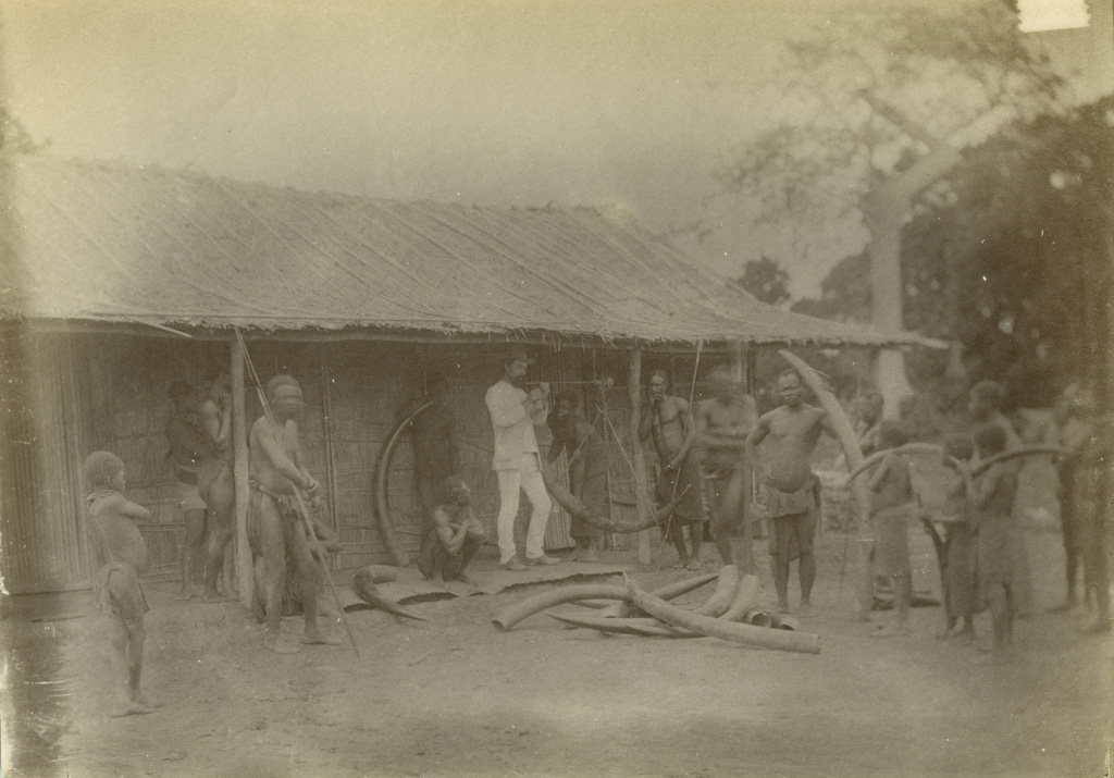 Achat d'ivoire à Bonga (Sanga) / non identifié (1890/1900)