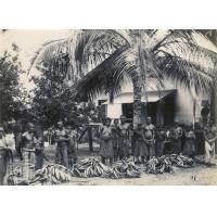 Achat de bananes à Lambaréné