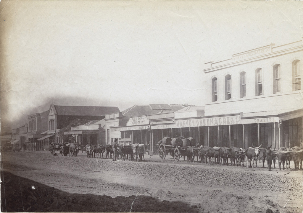 Attelages stationnés dans une rue de Durban