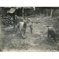 Au jardin 'mundo' avec ses deux enfants, à Yabassi