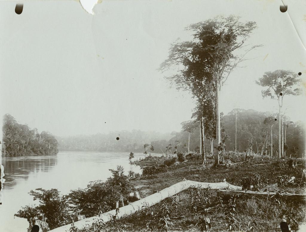 [Bord de fleuve au Gabon]
