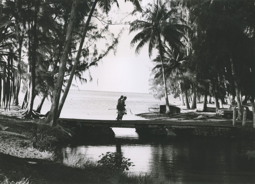 Bord de mer / John Taylor (1964)