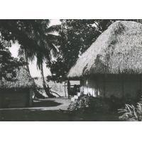 Bungalow au bord de la mer à Tahiti