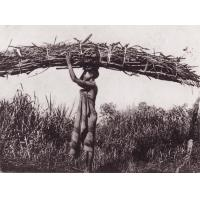 Cameroun, Porteuse de bois