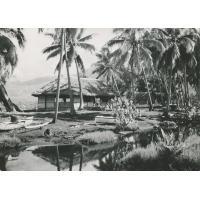 Case à la Pointe-Vénus, Tahiti