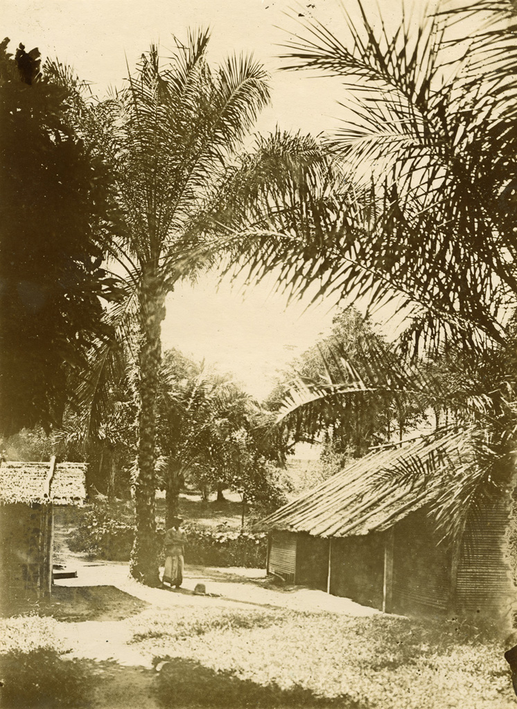 Case dans un village pahouin