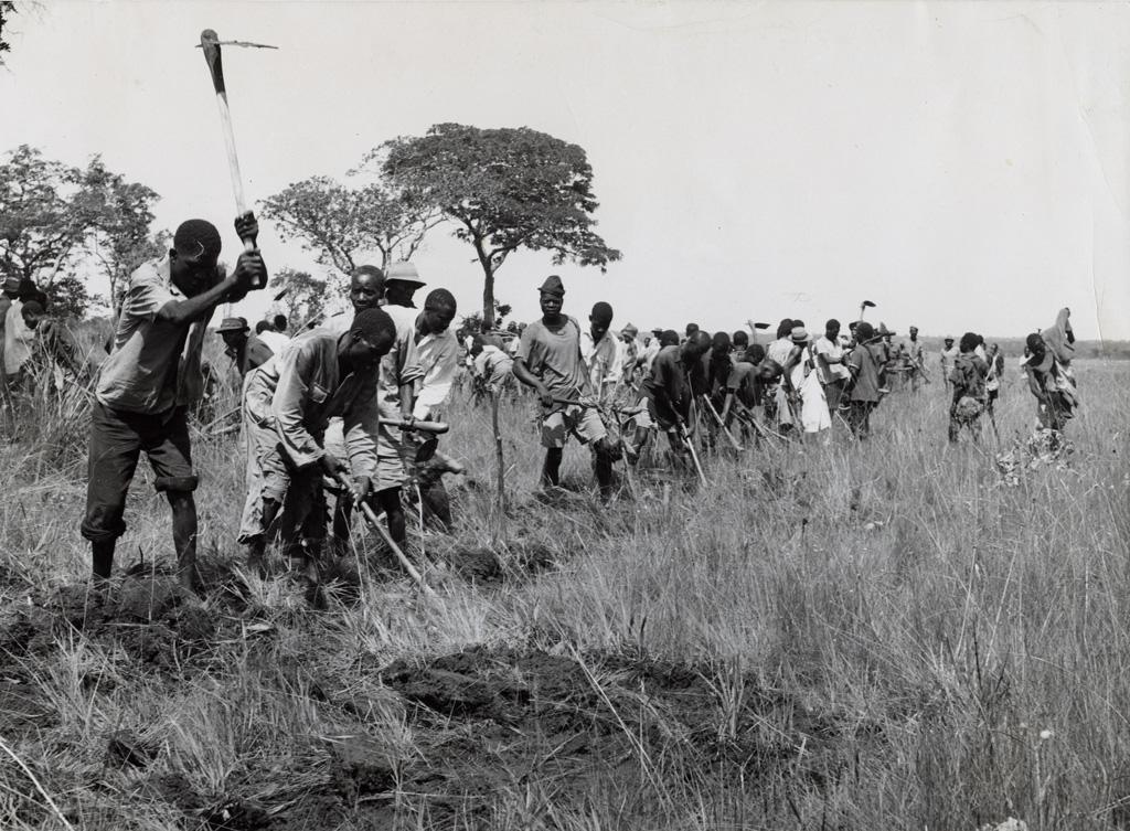 Ces villageois de la province de Luapala ont volontairement travaillé côté à côte pour construire eux-même une chaussée à travers les eaux de la rivière Mausa, sur la section Chama / Kalaba de la