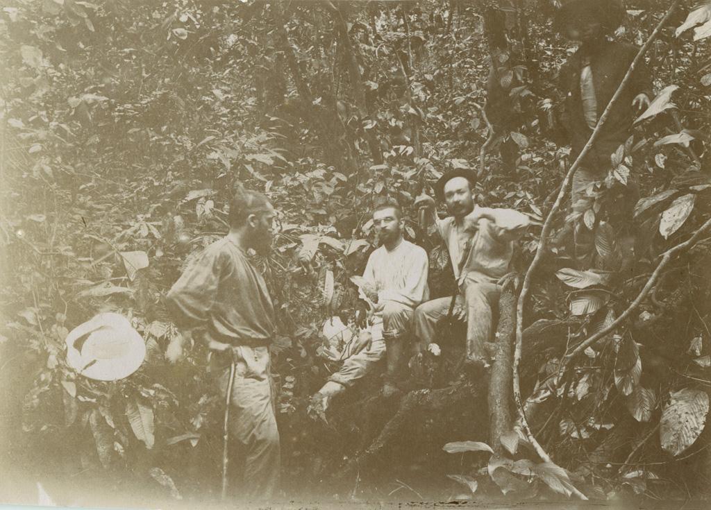 Dans la brousse au Gabon