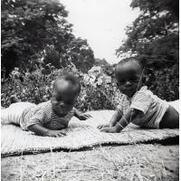Deux jumeaux orphelins