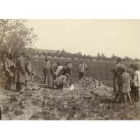 Enterrement à Mafube : mise en terre du cercueil