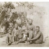 Famille de Masarons