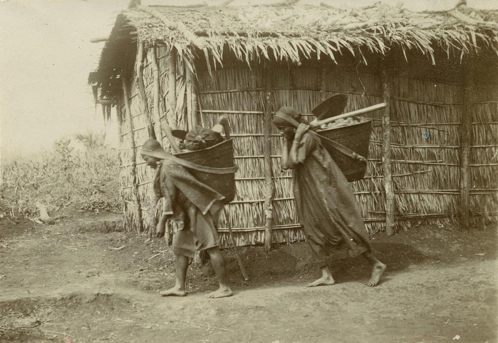 Femmes Bakabas portant la hotte en revenant de leur jardin