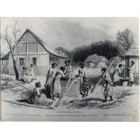 Femmes esclaves remplissant des bambous