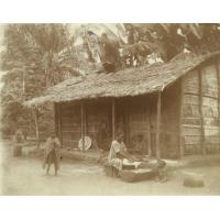 Femmes préparant du manioc