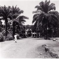 Foumban : le palais du Sultan