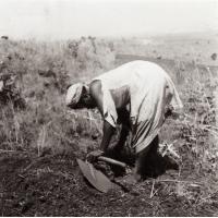 Foumban : une femme au travail