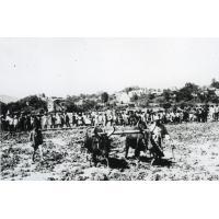 Groupe artisanal, démonstration dans notre rizière