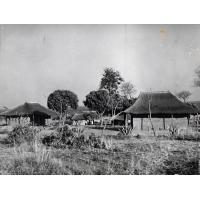 Groupe d'habitations aux toits de chaume
