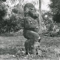 "Idole ""Ti' i"", importée des Australes"