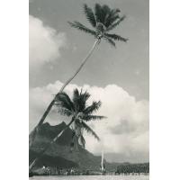 Iles-sous-le-vent. Bora-Bora
