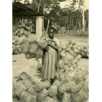 Jeune lépreuse aux paniers pour cacao
