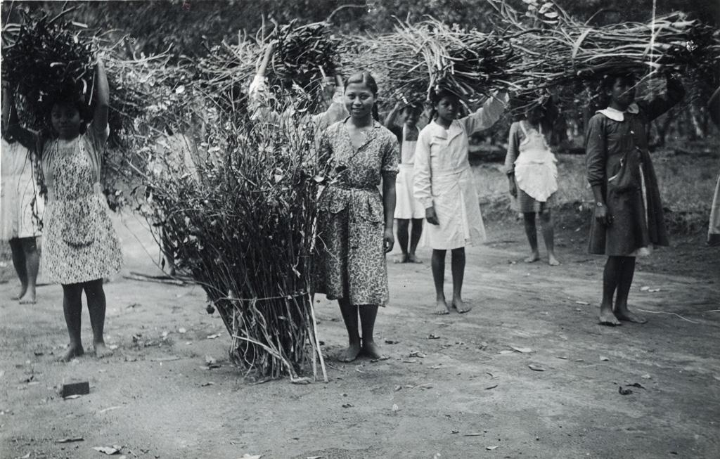 Jeunes internes, corvée de bois