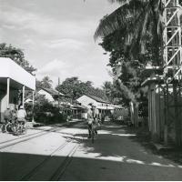 L'une des voies principales de Vaitepaua, atoll de Makatea