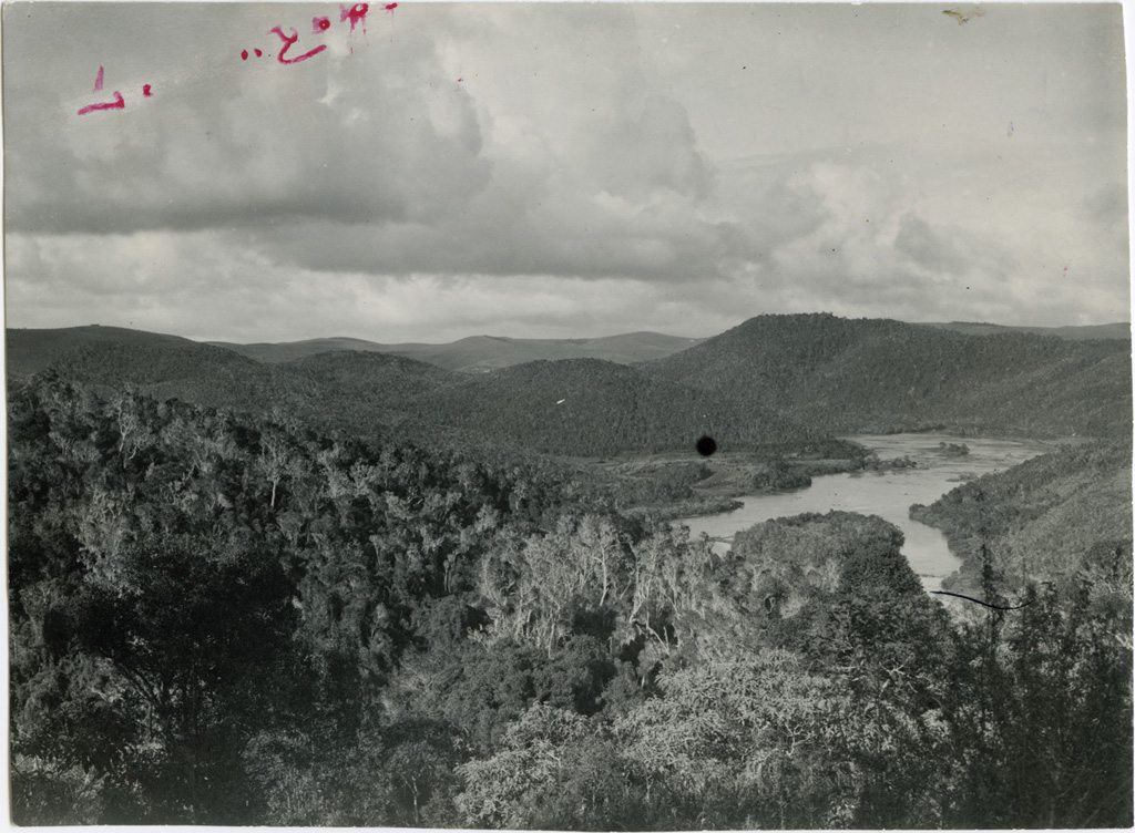 La forêt entre Tamatave et Tananarive
