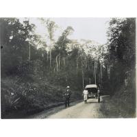 La grande route dans la forêt (l'ancienne route de montée à Tananarive)