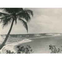 La plage de Makatea
