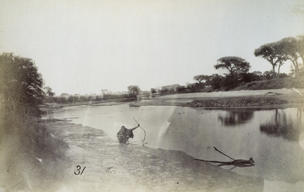 La rivière Nata