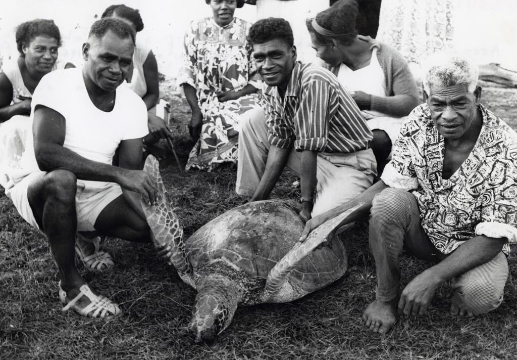 La tortue que le grand chef Boula a envoyée pour un repas des délégués