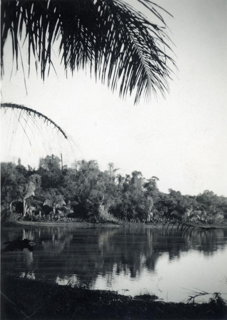 Lac d'Ampijaroa, source de la Marovoay