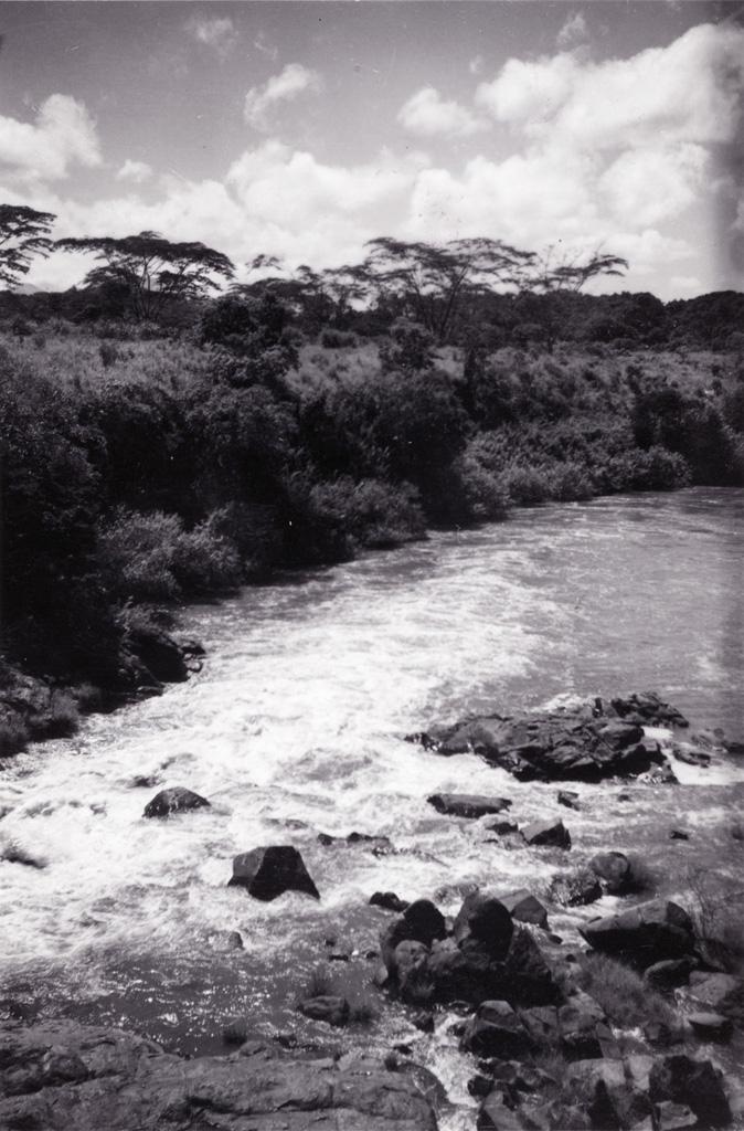 Le Noun, fleuve séparant le pays Bamiléké du pays Bamoun