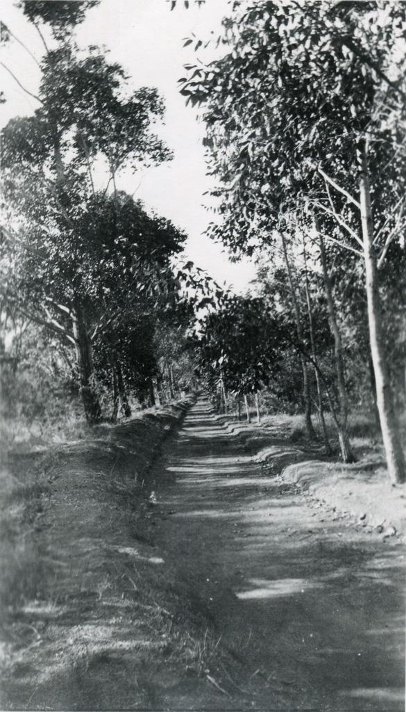 Le chemin de ronde, léproserie de Manankavaly / non identifié (1920/1960)