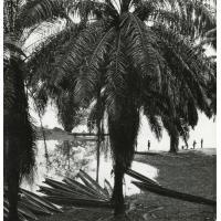 Le marigot des filles à Lambaréné, anse de l'Ogooué