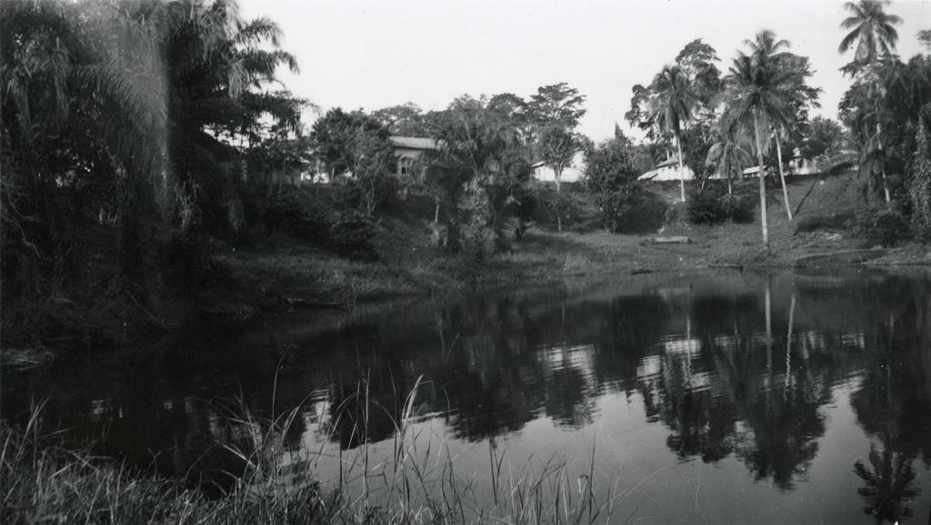 Le petit marais de Ngomo