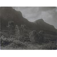 """Le """"pic du diable"""" ou """"Devil's peak"""", vu depuis Kirstenbosch"""