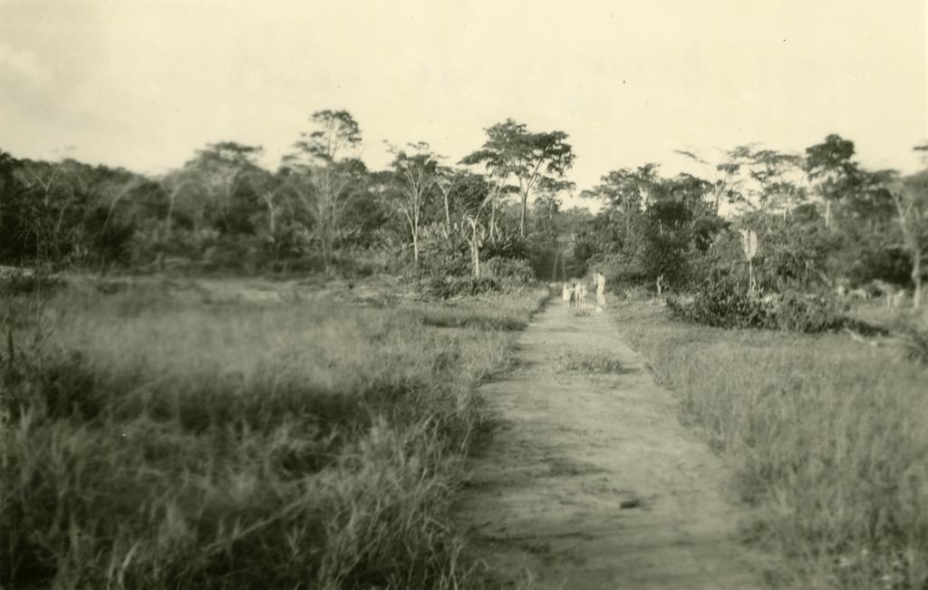 Le tronçon vers la léproserie d'Oyem