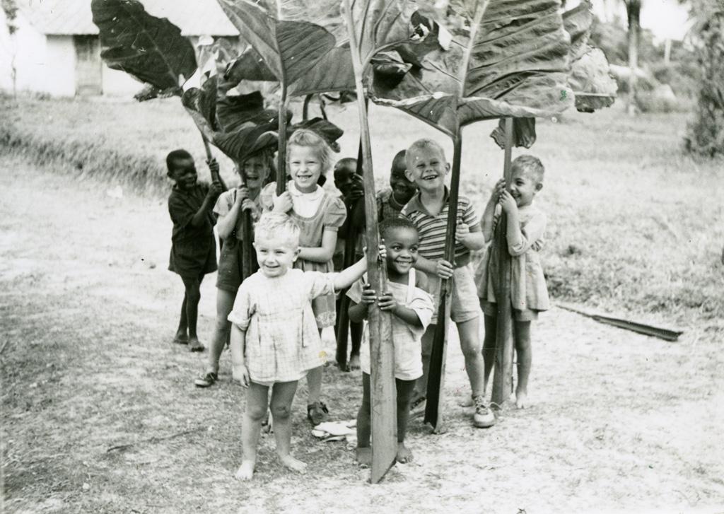 Les feuilles de taro ou makabo