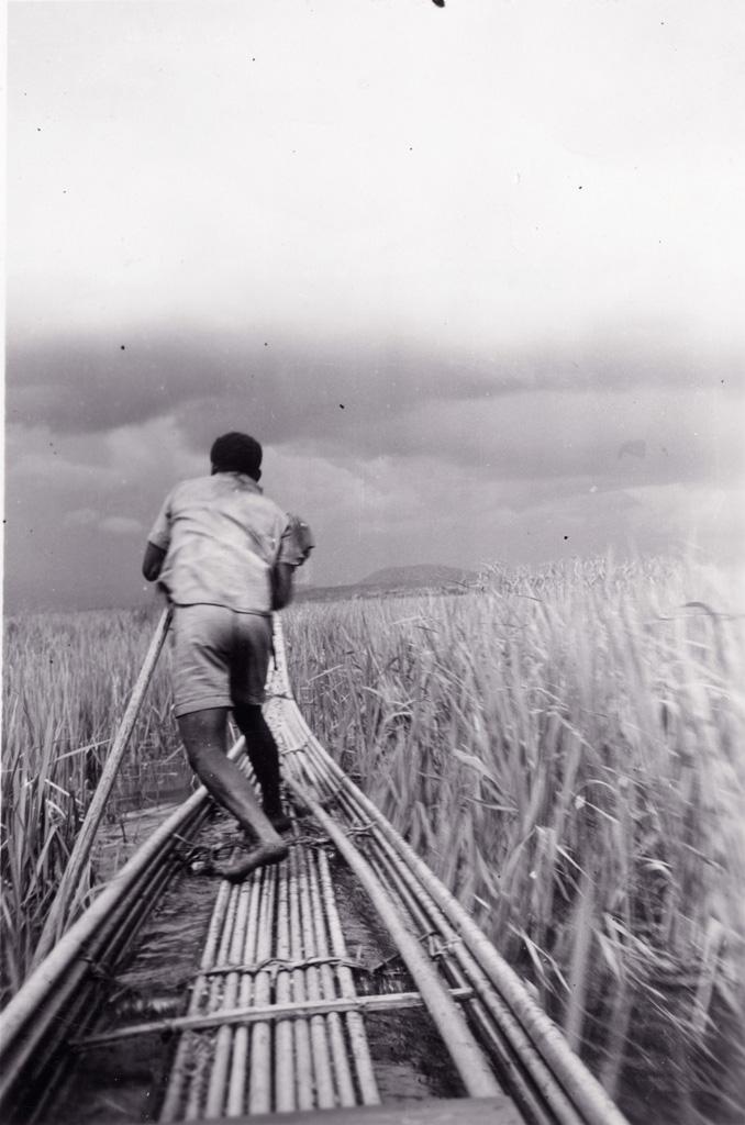 Les pirogues ; flotteurs en raphia dans les marais du Noun