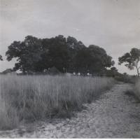 Lwatembo