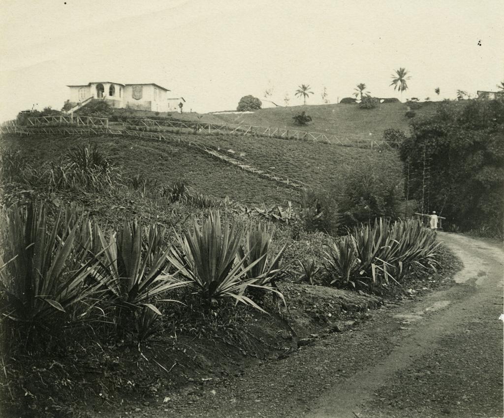 Maison de l'Administrateur / L.R. (1920/1930)