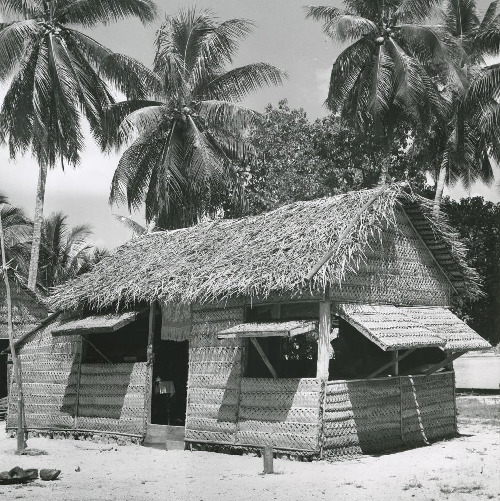 Maison en feuilles de cocotiers